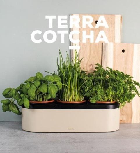 Terra Cotcha zelfwatergevende kruidenpot - 3x Ø 10 cm