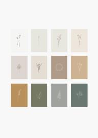 Set kaarten (12 stuks!) botanische minimalistische prints