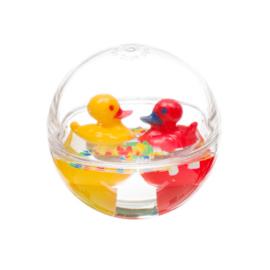 Waterbal bol eendjes