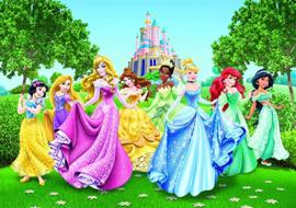 Disney prinsessen  360 x 254 incl lijm