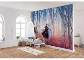 Disney behang Frozen  368x 254 incl lijm