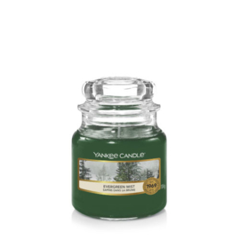 Yankee Candle Small Jar Evergreen Mist