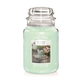 Yankee Candle Large Jar Alpine Mint (Limited Edition)