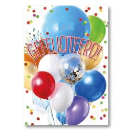 Hallmark Wenskaart Collectie Big Wishes 09 (Verjaardag leeftijden)
