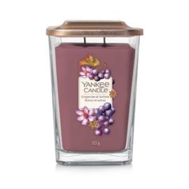 Yankee Candle Grapevine & Saffron
