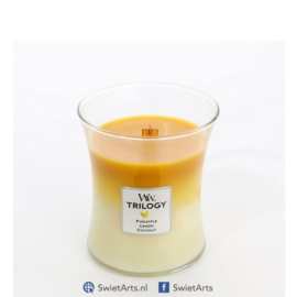 WoodWick Medium Candle Fruits of Summer Trilogy