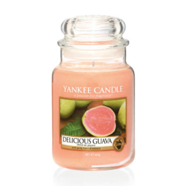 Yankee Candle Delicious Guave