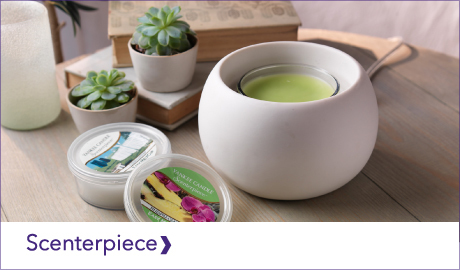 YANKEE CANDLE SCENTERPIECE SYSTEMS & EASY MELTCUPS