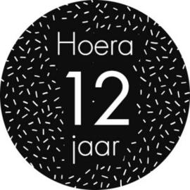 Stickers 'Hoera 12 jaar' 20 stuks