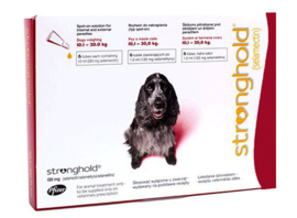 Stronghold hond 10,1 tot 20 kg, 3 pipetten