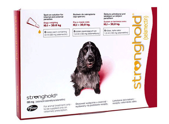 Stronghold hond 10,1 tot 20 kg, 3 pipetten