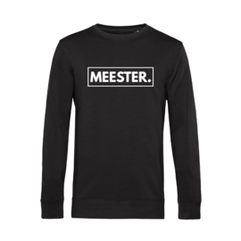 Zwart MEESTER. Lightweight Sweater Klas