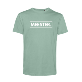 Pastel mint MEESTER. Shirt Klas