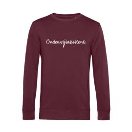 Bordeaux ONDERWIJSASSISTENT. Heren Sweater Krijt