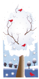 Klimwand - winter