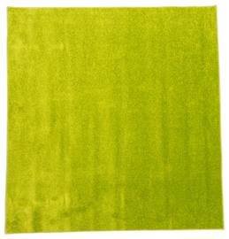 Tapijt 200x200cm - Groen