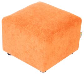 Duizendpoot - klein oranje element
