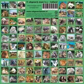 Stickers wilde dieren - serie 181