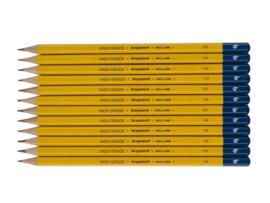 12 potloden Bruynzeel 1H