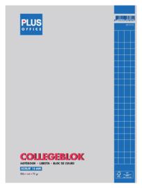 Collegeblok Budget A4 23-gaats ruit 10 mm.