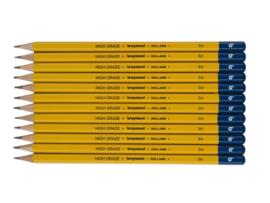 12 potloden Bruynzeel 3H