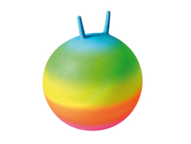Skippybal regenboogkleuren 50 cm.