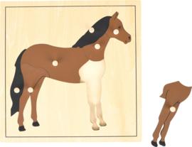 Noppen puzzel paard