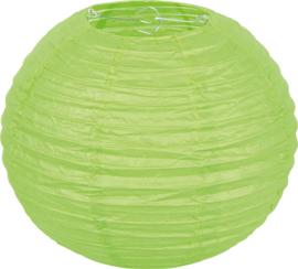 Papieren lampion - groen