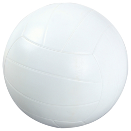 Rubberen volleybal