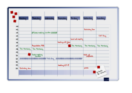 ACCENTS Linear planner - Cool weekplanner 60 x 90 cm