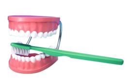 Tanden en tandenborstel