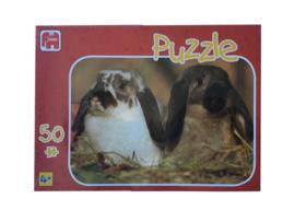 Puzzel konijntjes