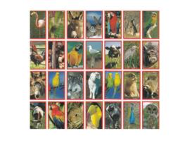 Stickers dieren assortiment