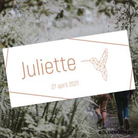 Koperfolie | Juliette | 27 april 2021