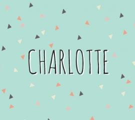 Charlotte / 22 februari 2015