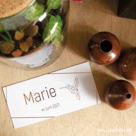 Koperfolie kolibri | Marie | 6 juni 2021