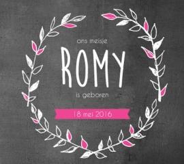 romy / 18 mei 2016