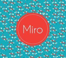 Miro / 29 augustus 2016