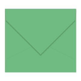 Erwt envelop