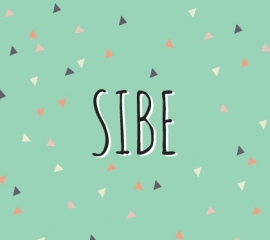 Sibe / 29 april