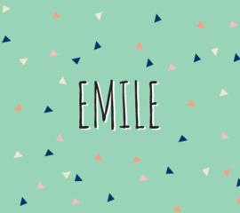 Emile / 27 juni 2017
