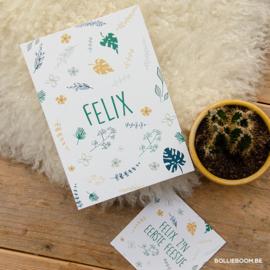 Felix | 17 september 2019