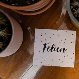 Stipjes | Felien | 27 februari 2020