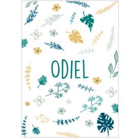 Geboortekaartje Odiel