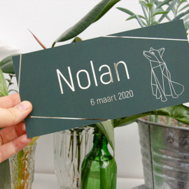 Vos  | Nolan | 6 maart 2020