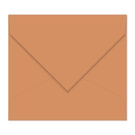 Roosbruine envelop