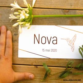 Kolibri  | Nova | 15 mei  2020