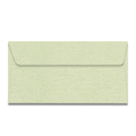 Kiwi (met spikkels) US envelop