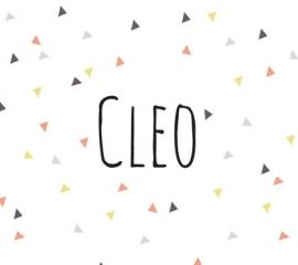 Cleo / 31 mei 2016