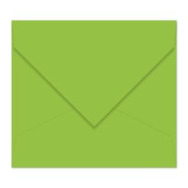 Grasgroene envelop